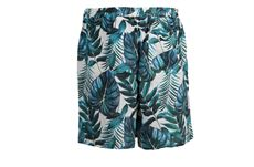 Farret shorts, palm, Muse