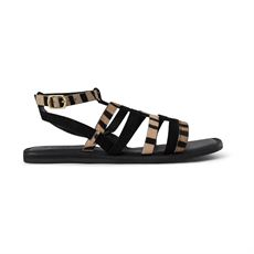 SHOE THE BEAR SANDAL, TAO GLADIATOR SANDAL, SORT